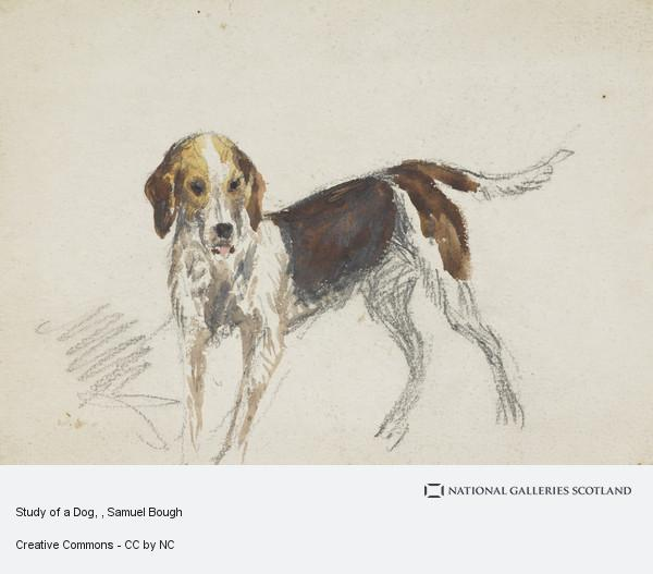 Image of: Arms Samuel Bough Study Of Dog Visitscotland Study Of Dog Page 125 National Galleries Of Scotland