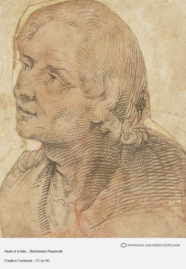 Bartolomeo Passerotti, Head of a Man
