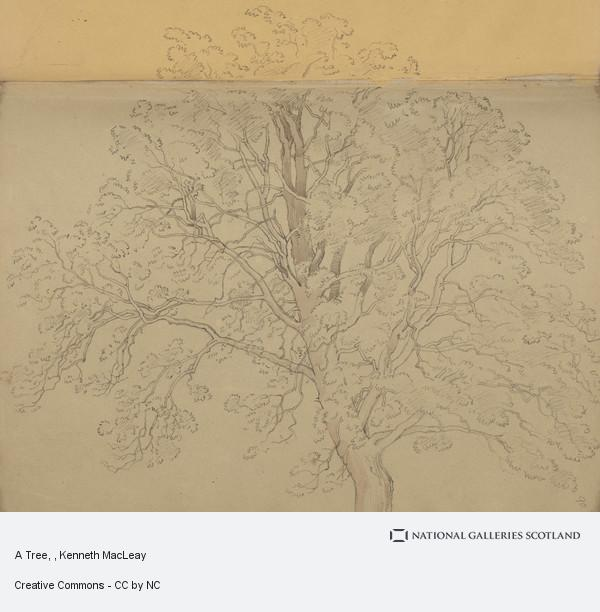 Kenneth Macleay, A Tree