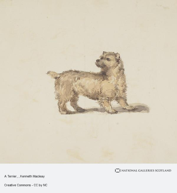 Kenneth Macleay, A Terrier