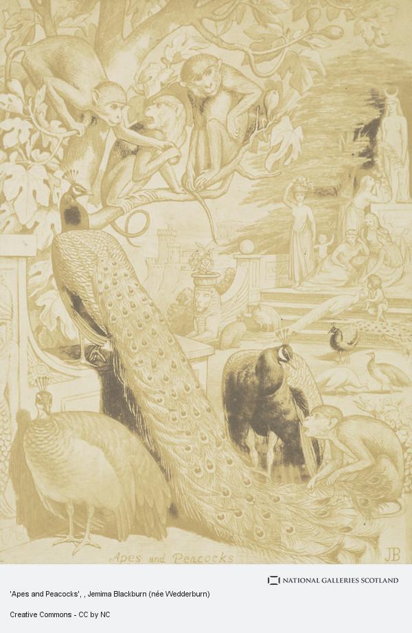 Jemima Blackburn (née Wedderburn), 'Apes and Peacocks'