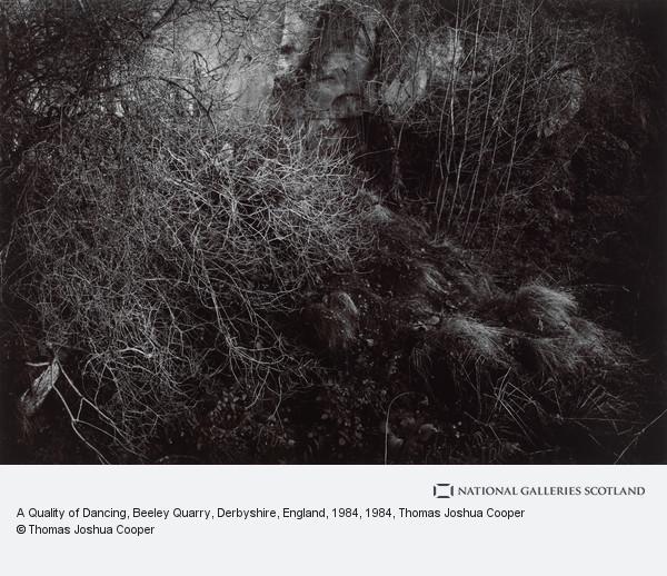Thomas Joshua Cooper, A Quality of Dancing