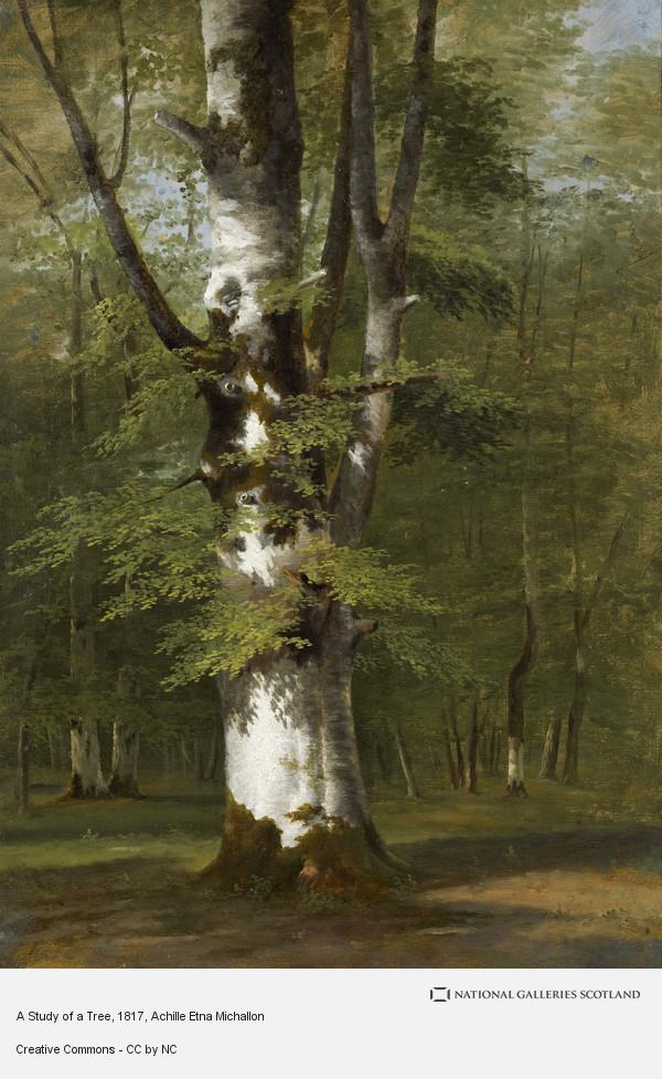 Achille Etna Michallon, A Study of a Tree