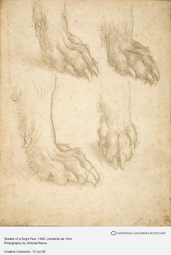 Leonardo da Vinci, Studies of a Dog's Paw