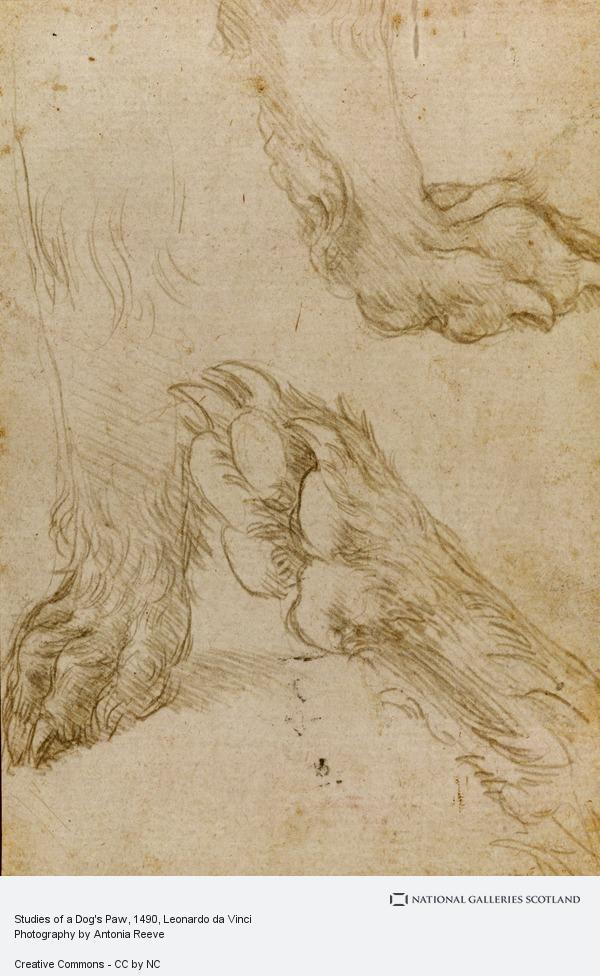 Leonardo da Vinci, Studies of a Dog's Paw (About 1490 - 1495)