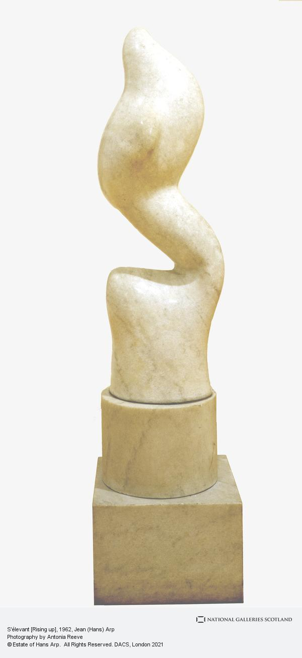 Jean Arp, S'élevant [Rising up]