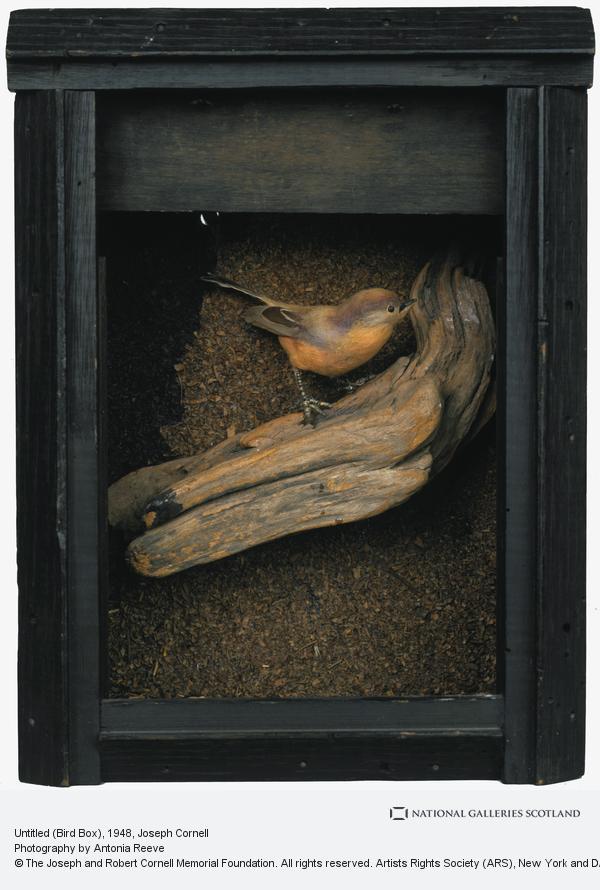 Joseph Cornell, Untitled (Bird Box)