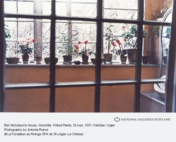 Felicitas Vogler, Ben Nicholson's House, Goonhilly: Potted Plants, St Ives