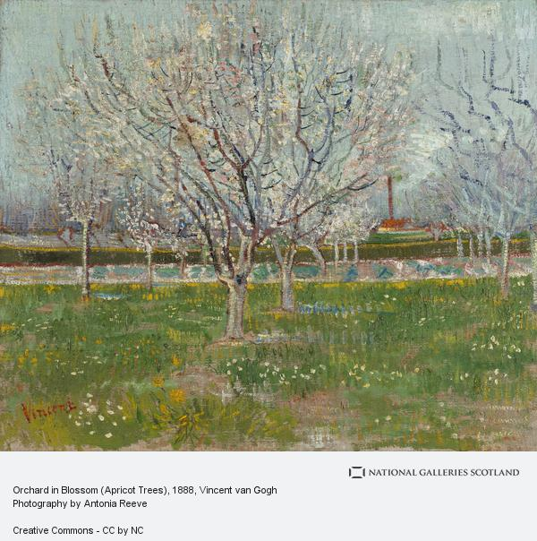 Vincent van Gogh, Orchard in Blossom (Plum Trees) (1888)