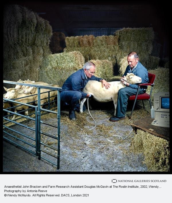 Wendy McMurdo, Anaesthetist John Bracken and Farm Research Assistant Douglas McGavin at The Roslin Institute (2002)