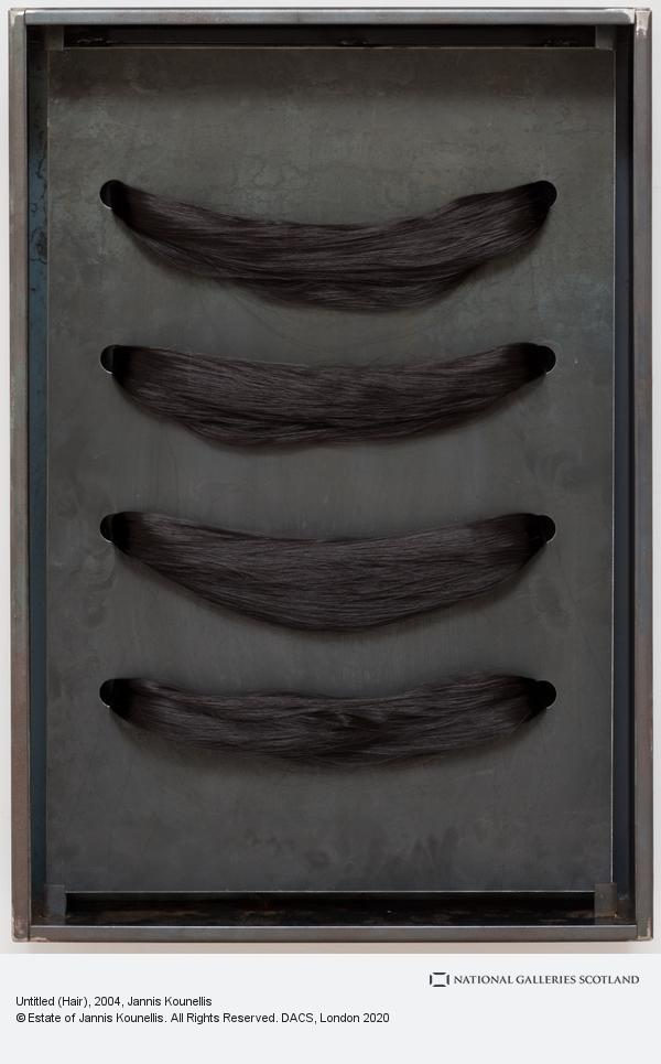 Jannis Kounellis, Untitled (Hair) (2004)