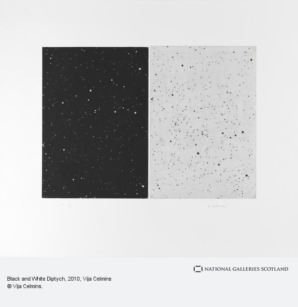Vija Celmins, Black and White Diptych