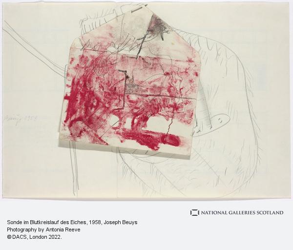 Joseph Beuys, Sonde im Blutkreislauf des Eiches [Probe in the bloodstream of the oak] (1958)