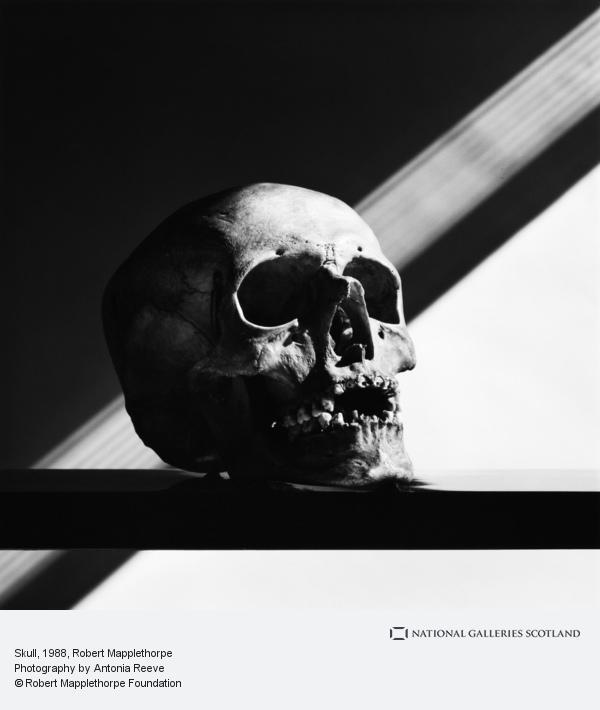 Robert Mapplethorpe, Skull
