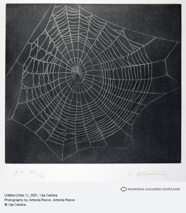 Vija Celmins, Untitled (Web 1) (2001)