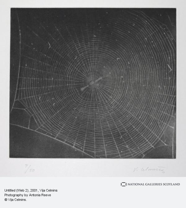 Vija Celmins, Untitled (Web 2) (2001)