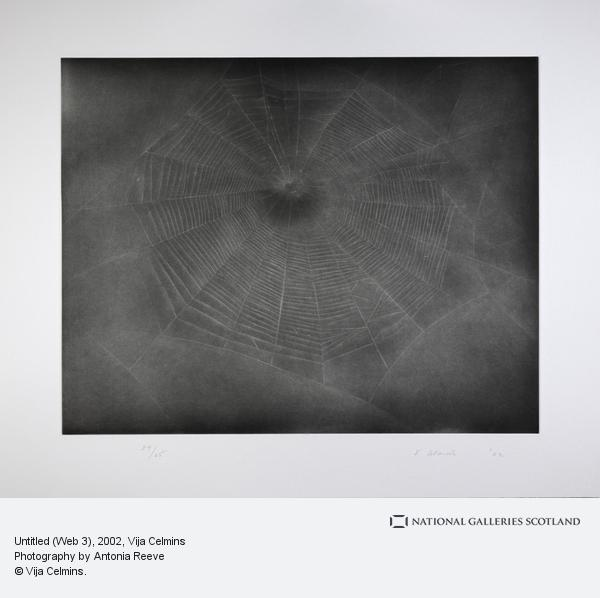 Vija Celmins, Untitled (Web 3) (2002)