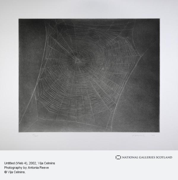 Vija Celmins, Untitled (Web 4) (2002)
