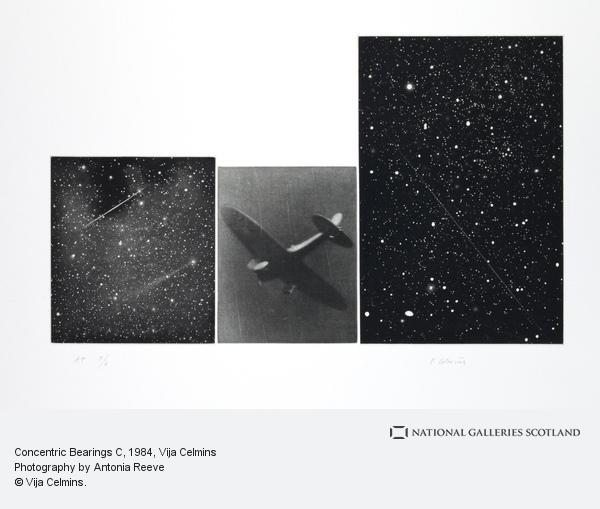 Vija Celmins, Concentric Bearings C (1984)