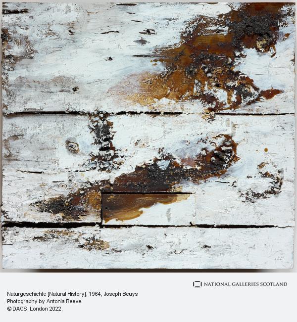 Joseph Beuys, Naturgeschichte [Natural History]