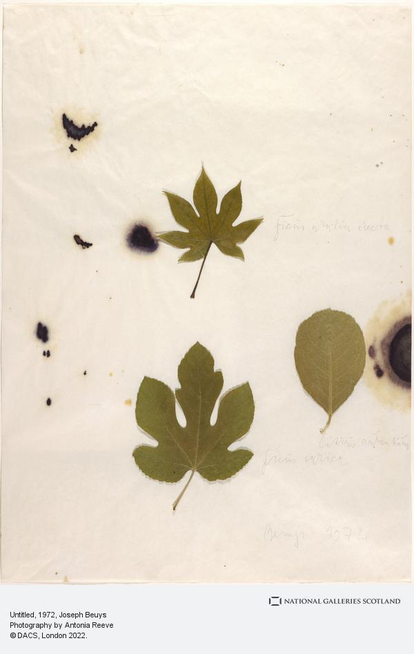 Joseph Beuys, Untitled (1972)