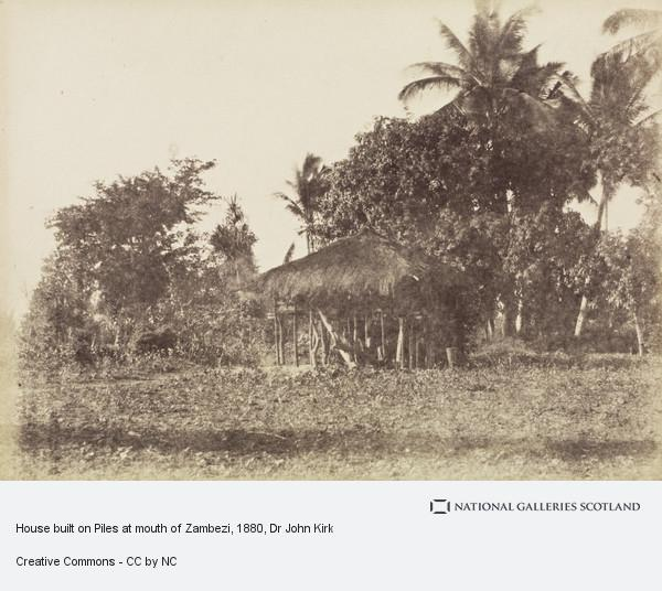 Dr John Kirk, House built on Piles at mouth of Zambezi