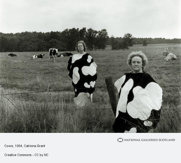 Catriona Grant, Cows