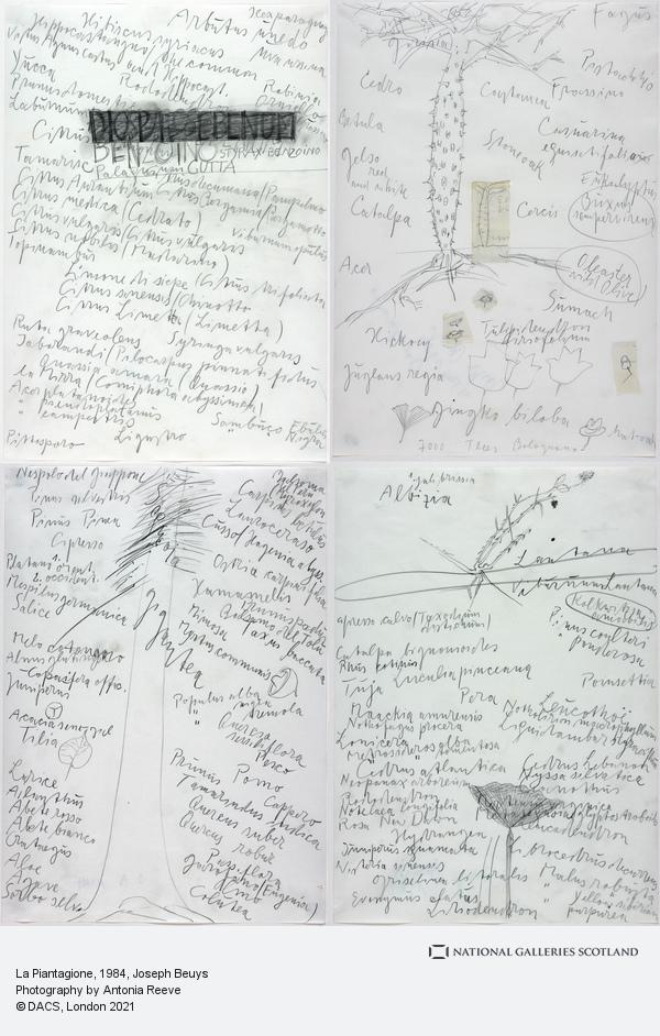 Joseph Beuys, La Piantagione (1984)