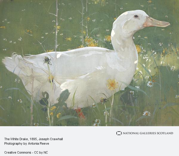Joseph Crawhall, The White Drake (About 1895)