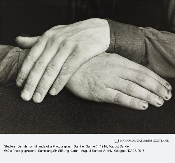 August Sander, Studien - Der Mensch [Hands of a Photographer (Gunther Sander)], 1944 (1944)