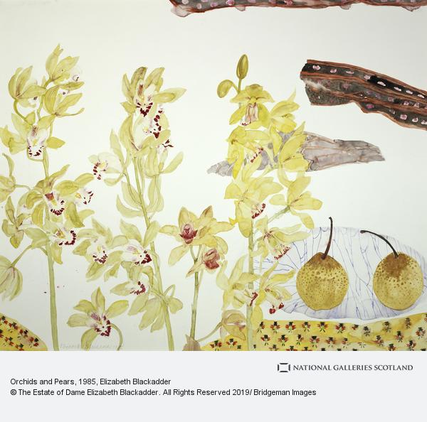 Elizabeth Blackadder, Orchids and Pears (1985)