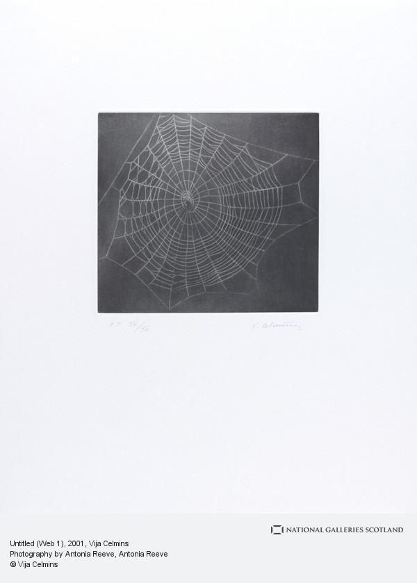 Vija Celmins, Untitled (Web 1)