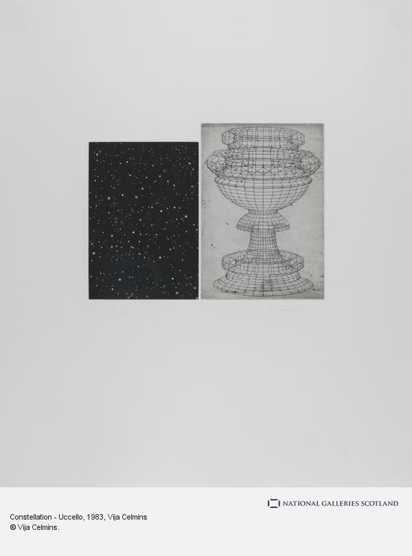 Vija Celmins, Constellation - Uccello (1983)