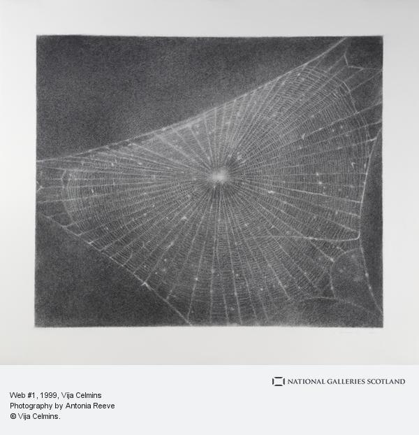 Vija Celmins, Web #1 (1999)