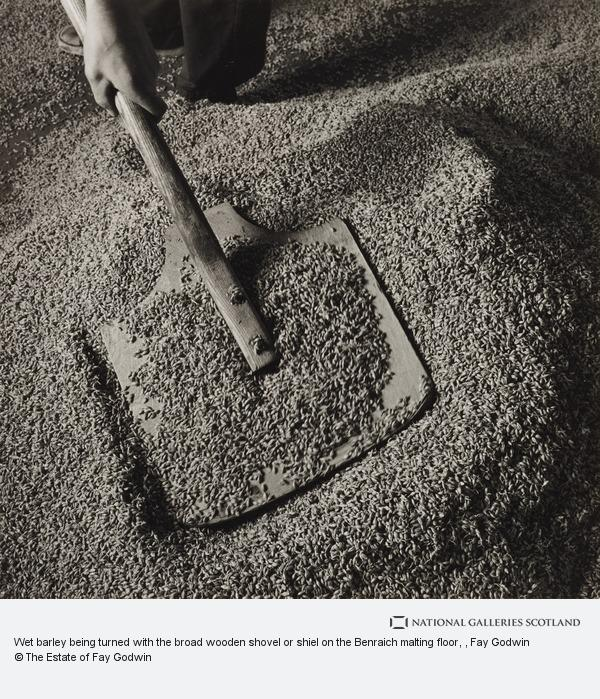 Fay Godwin, Wet barley being turned with the broad wooden shovel or shiel on the Benraich malting floor