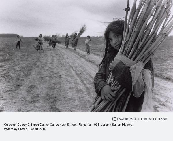 Jeremy Sutton-Hibbert, Calderari Gypsy Children Gather Canes near Sintesti, Romania