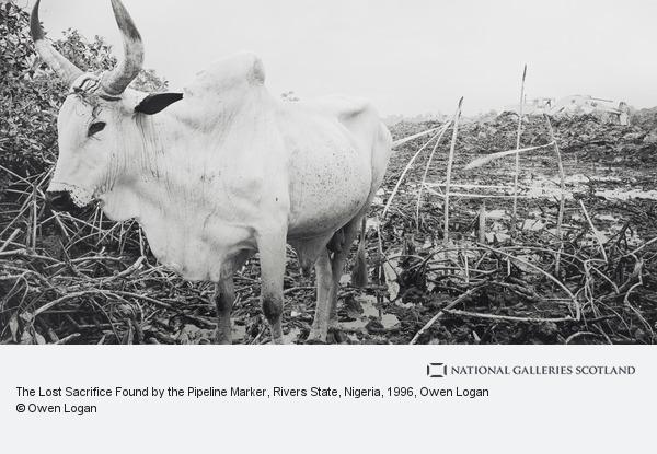 Owen Logan, The Lost Sacrifice Found by the Pipeline Marker, Rivers State, Nigeria