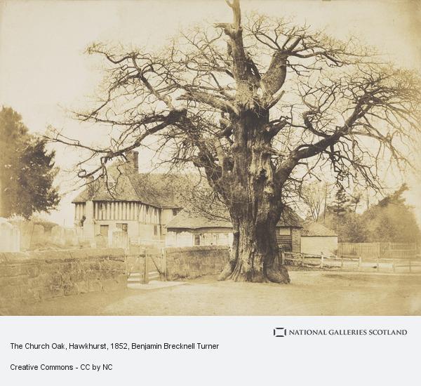 Benjamin Brecknell Turner, The Church Oak, Hawkhurst