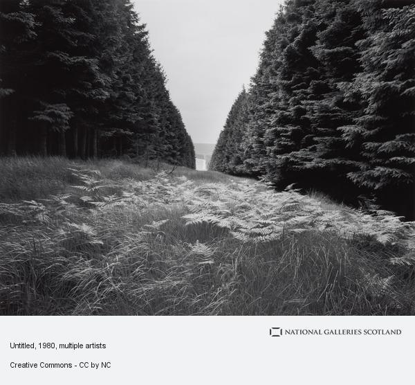 Owen Logan, Untitled