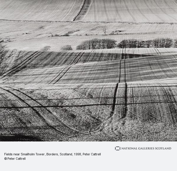 Peter Cattrell, Fields near Smailholm Tower, Borders, Scotland
