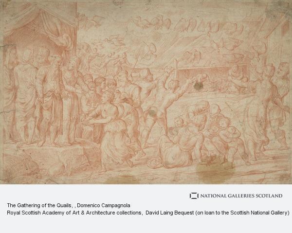 Domenico Campagnola, The Gathering of the Quails