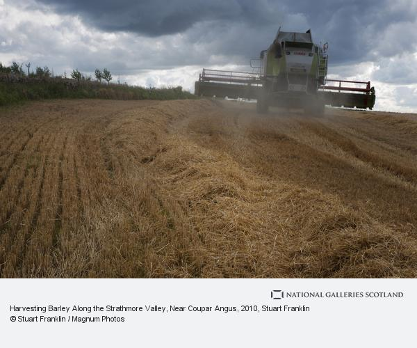 Stuart Franklin, Harvesting Barley Along the Strathmore Valley, Near Coupar Angus