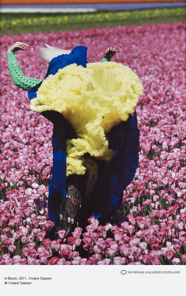 Viviane Sassen, In Bloom