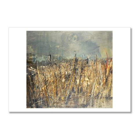 Seeded Grasses and Daisies, September by Joan Eardley postcard