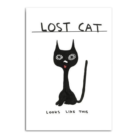 Lost cat by David Shrigley greeting card