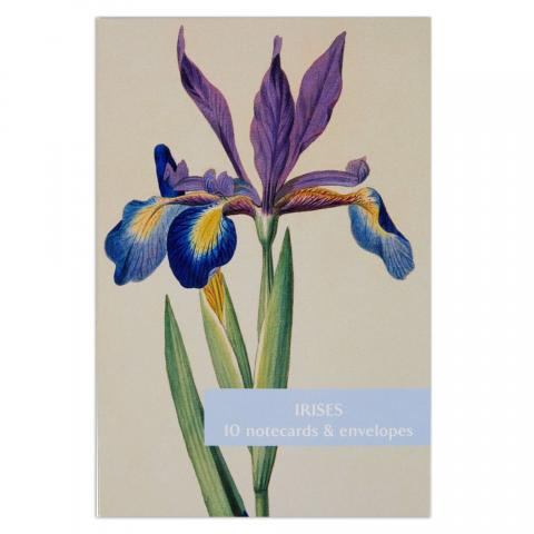 Irises notecard set (10 cards)