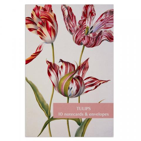 Tulips notecard set (10 cards)