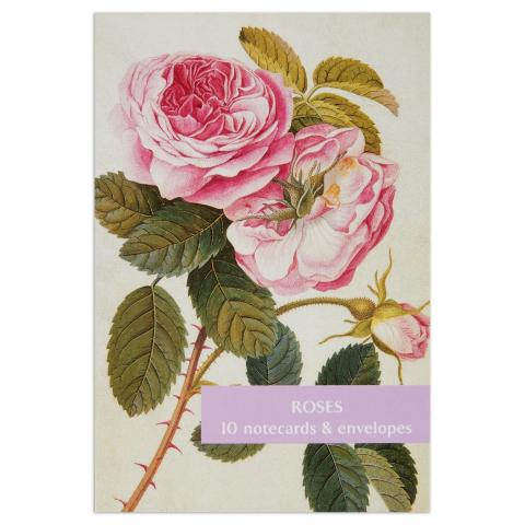 Roses notecard set (10 cards)