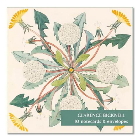 Botanical illustrations by Clarence Bicknell square notecard set (10 cards)