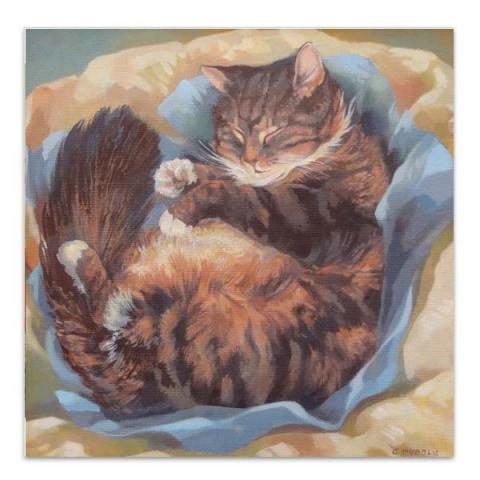 Puss asleep greeting card